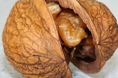 Opened walnut
