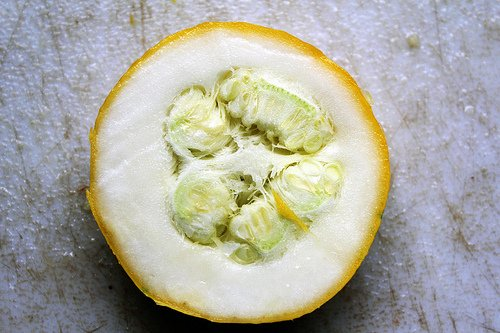 Yellow squash inside