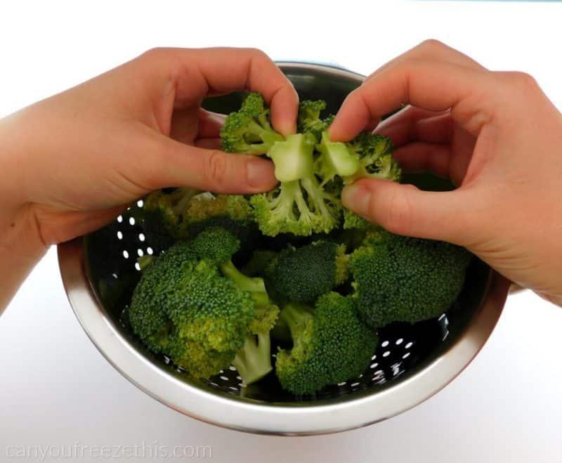 Splitting broccoli floret into two
