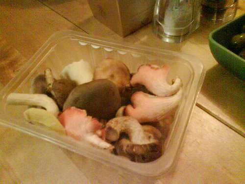 Pack of mushrooms